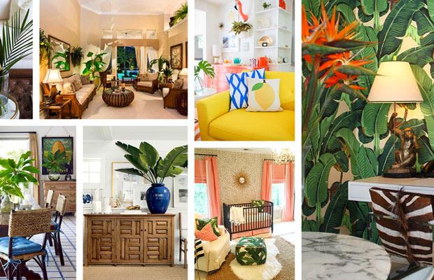 Phong cách nhiệt đới Tropical Style là gì?